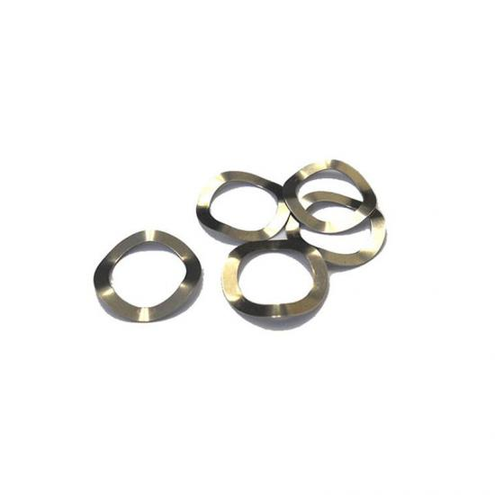 304ss Wave Spring For Coin Cell